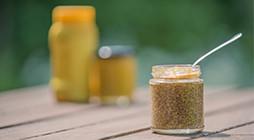 Preparation of Mustards - IT